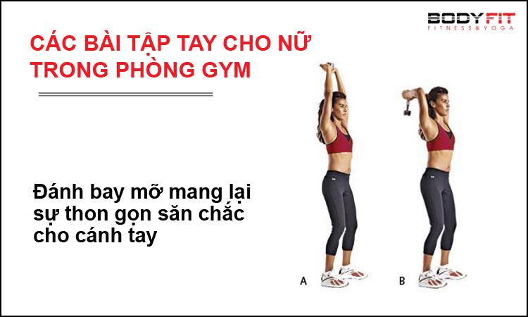 Các bài tập tay cho nữ trong phòng gym